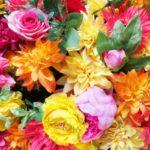 花や盆栽を父の日にプレゼントしよう!選び方の基準やおすすめの盆栽をご紹介します。